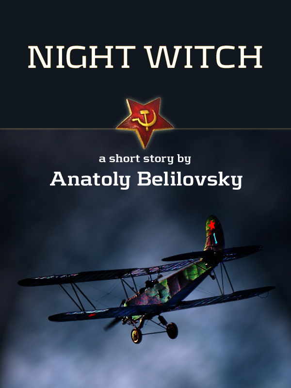 Night Witch Book Cover